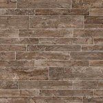 "Daltile Season Wood: Autumn Wood 12"" x 48"" Porcelain Tile SW03-12481P"