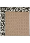 Capel Rugs Creative Concepts Grassy Mountain - Coral Cascade Ebony (385) Rectangle 8' x 10' Area Rug