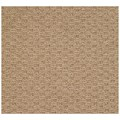Capel Rugs Creative Concepts Raffia - Octagon 12