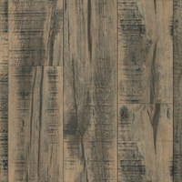 Armstrong Architectural Remnants: Skip Planed Blackened Natural 12mm Laminate L3106