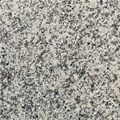 "Daltile Granite: Luna Pearl Polished 12"" x 12"" Natural Stone Tile G702-12121L"